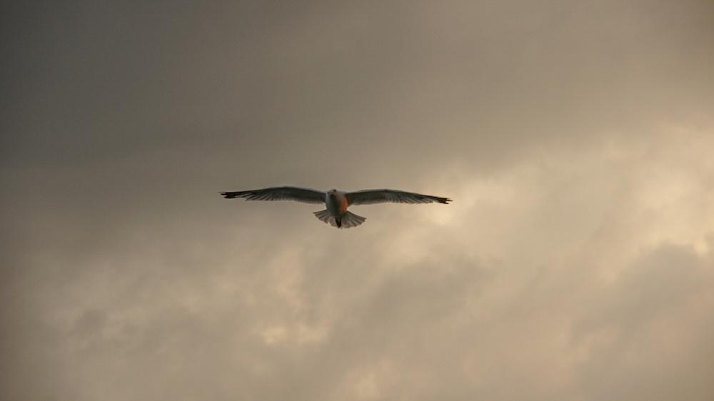 UK, Ramsgate ©Jordana Schramm