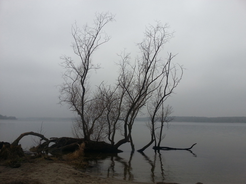 Mobile Snap / Wannsee, Berlin